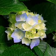 природа и её красота  group on My World