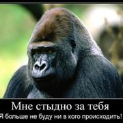 Андрей Сафонов on My World.