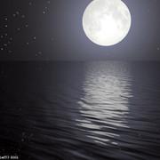 Lizzy Moon on My World.