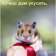 Серёга Лавров on My World.