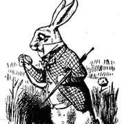 White Rabbit on My World.